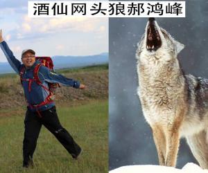 """郝鸿峰何以豪言状语干掉美国对手 因为酒仙网有如""""狼群""""一样集体徒步西口的团队"""